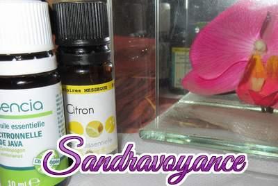 Quelques huiles essentielles et leurs vertus