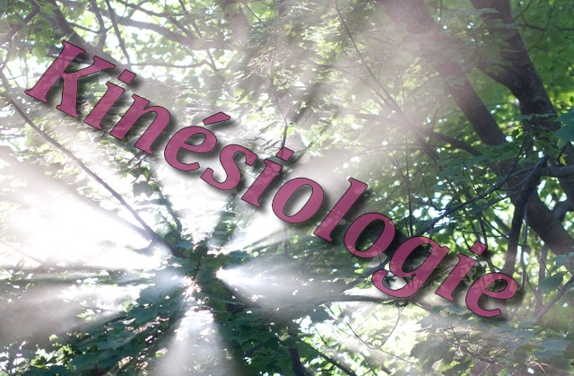 La kinesiologie